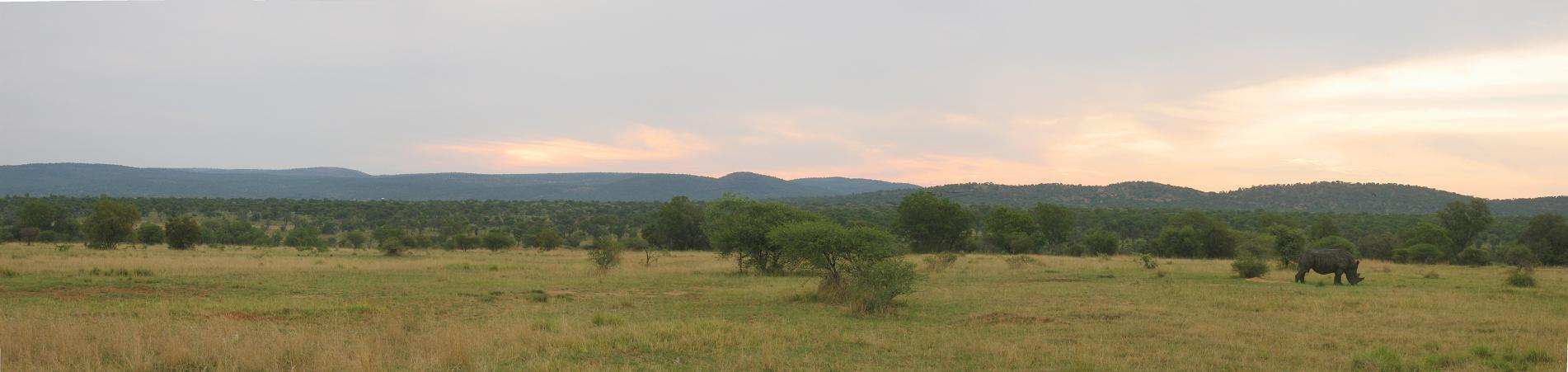 Southafrica_mabalerhino