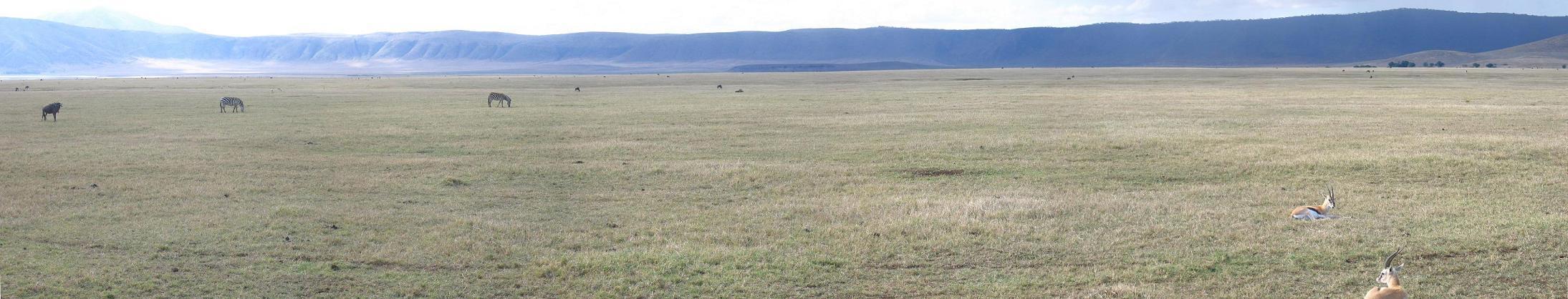 Tanzania_ngorongorofloor